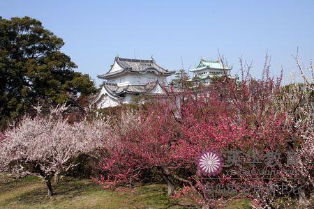 日本著名景点之名古屋介绍-青岛英华日语学校