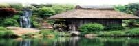 韩国文化与风俗习惯
